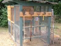 Best diy chicken coop plans medium