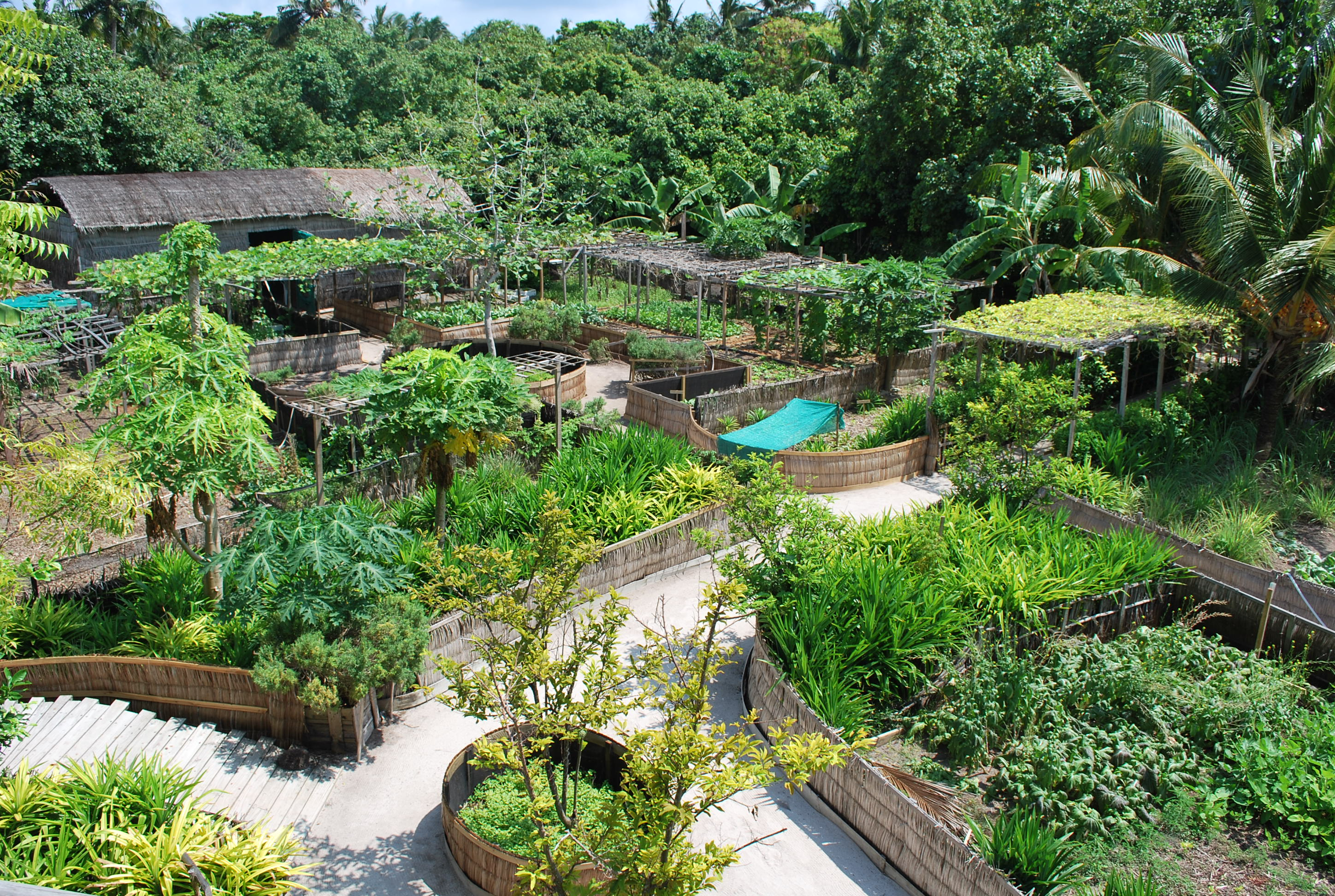 Jardins Permaculture Agroecologie Permaculture Agriculture